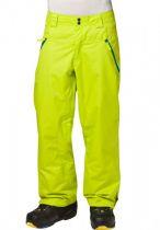 Pantalon de ski Oakley Shelf Life Vert